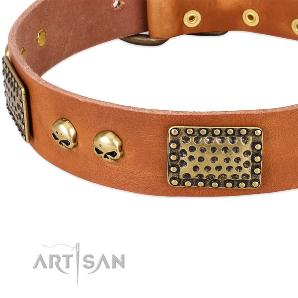 Durable traditional buckle on leather dog collar for your doggie