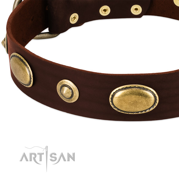 Corrosion resistant hardware on leather dog collar for your canine