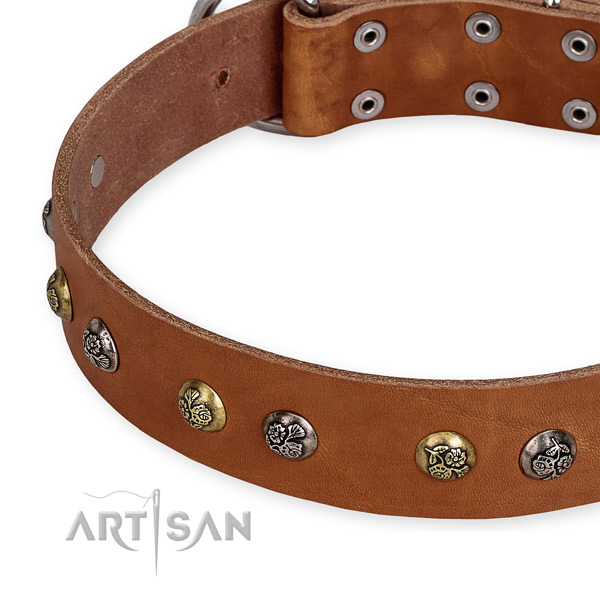 Genuine leather dog collar with unique corrosion resistant embellishments