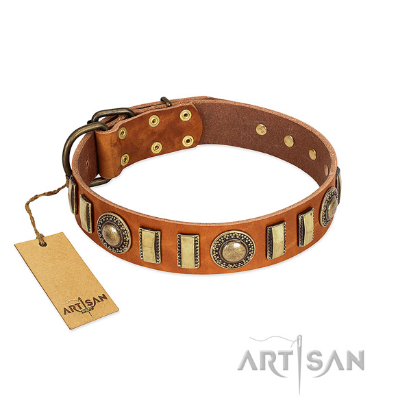 Incredible full grain leather dog collar with rust resistant hardware