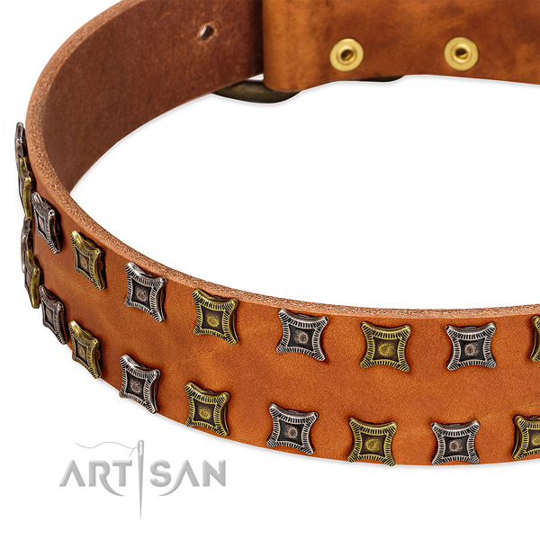Gentle to touch full grain leather dog collar for your stylish dog