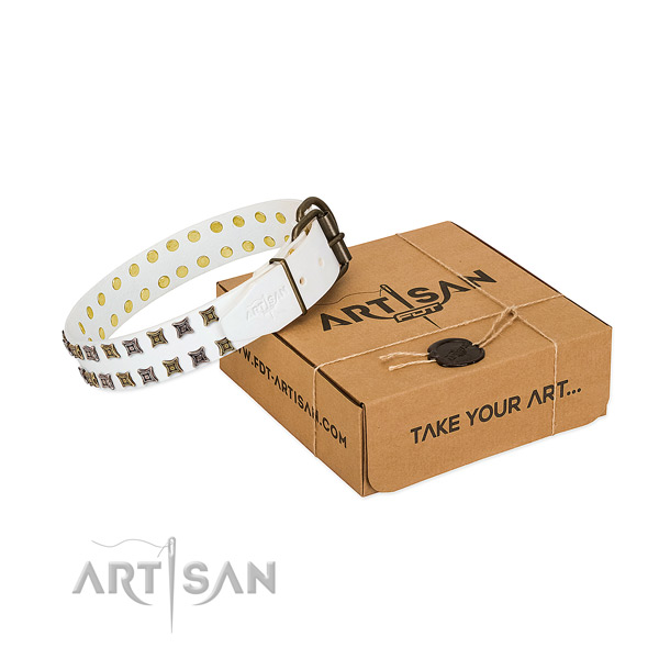 Genuine leather collar with significant studs for your pet