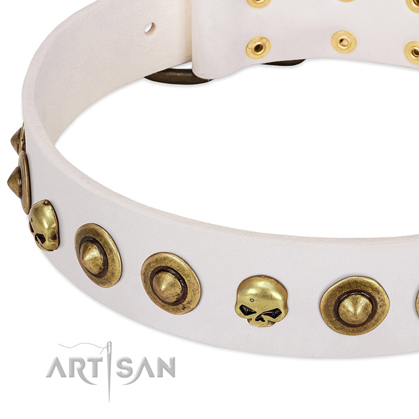 Fashionable studs on full grain natural leather collar for your doggie