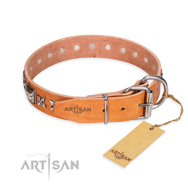 Finest quality adorned dog collar of full grain natural leather
