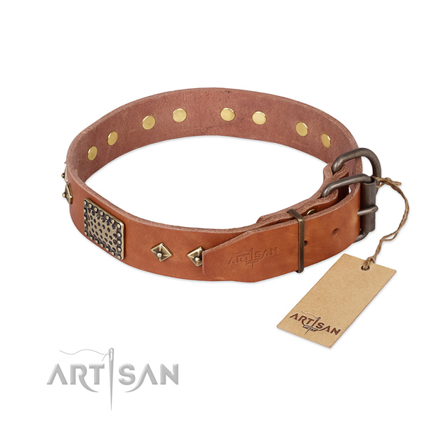 Natural leather dog collar with corrosion resistant fittings and embellishments
