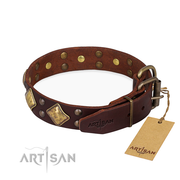 Full grain natural leather dog collar with unique rust-proof adornments