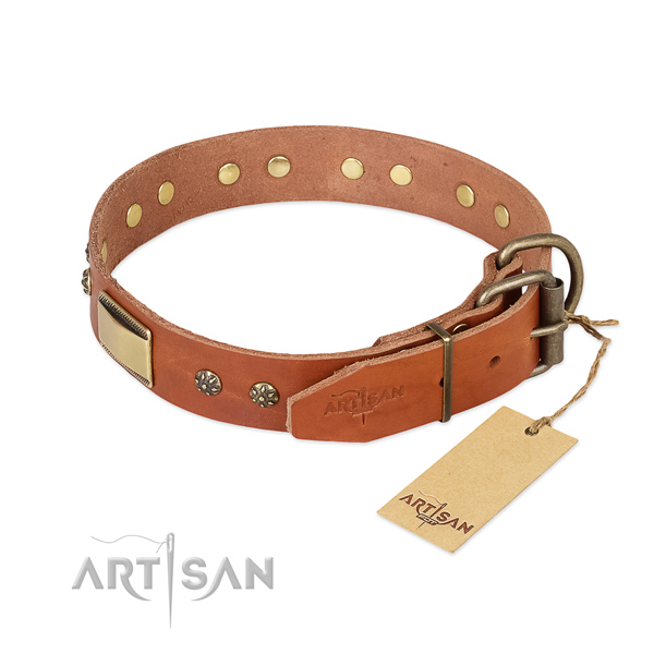 Natural genuine leather dog collar with reliable fittings and adornments