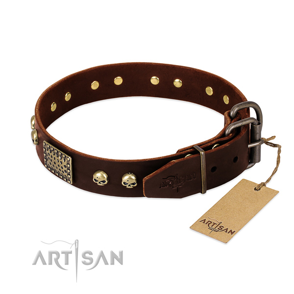 Corrosion resistant hardware on handy use dog collar