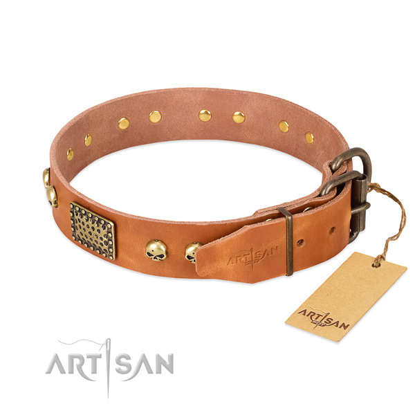 Rust-proof buckle on stylish walking dog collar