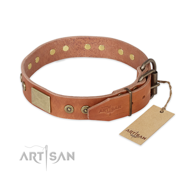 Corrosion proof traditional buckle on genuine leather collar for basic training your dog