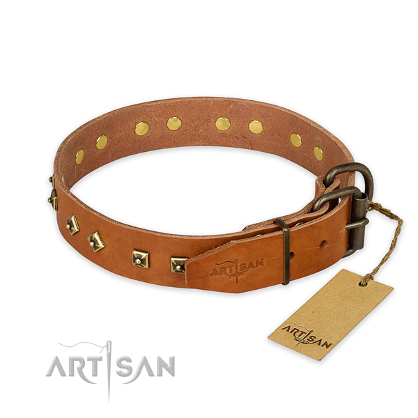 Durable buckle on natural leather collar for fancy walking your pet
