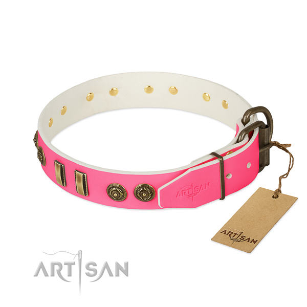 Rust resistant decorations on full grain leather dog collar for your four-legged friend