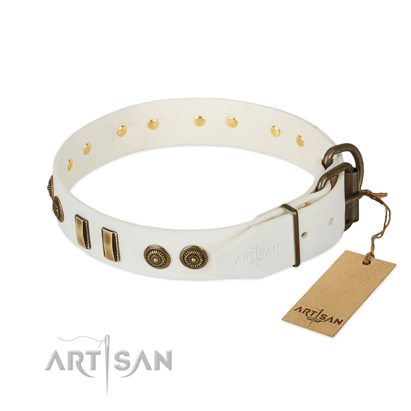 Corrosion resistant fittings on natural leather dog collar for your pet