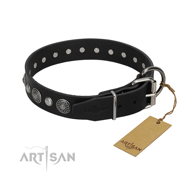 Best quality genuine leather dog collar with amazing adornments