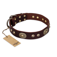 """Breath of Elegance"" FDT Artisan Decorated with Plates Brown Leather English Bulldog Collar"