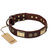 """Golden Stones"" FDT Artisan Brown Leather English Bulldog Collar with Old Bronze Look Plates and Circles"
