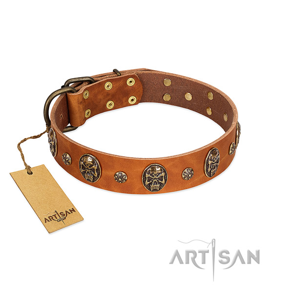 Incredible genuine leather collar for your doggie