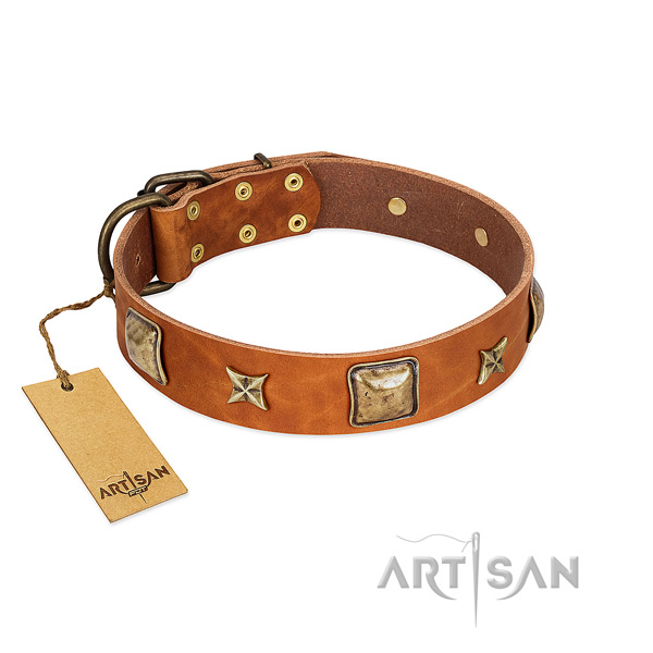 Top notch full grain natural leather collar for your canine