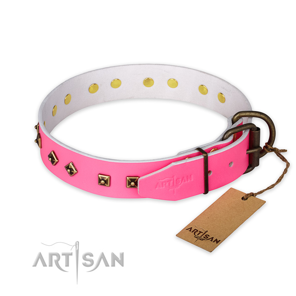 Reliable buckle on natural leather collar for basic training your dog