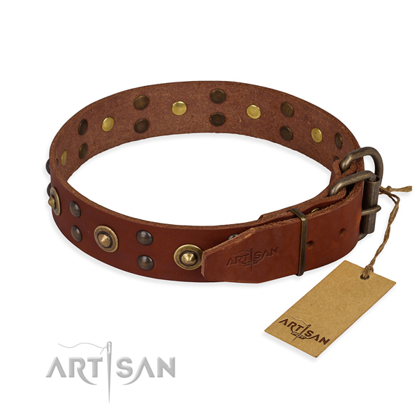 Reliable buckle on genuine leather collar for your impressive doggie