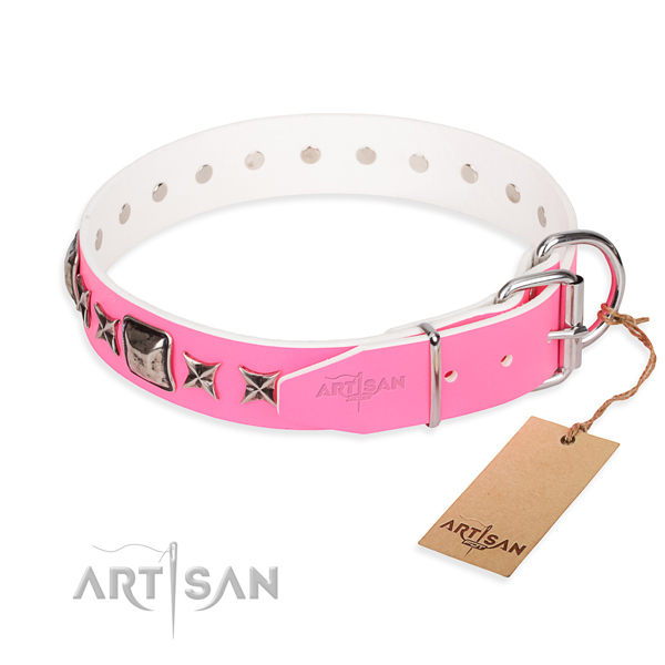High quality embellished dog collar of full grain leather