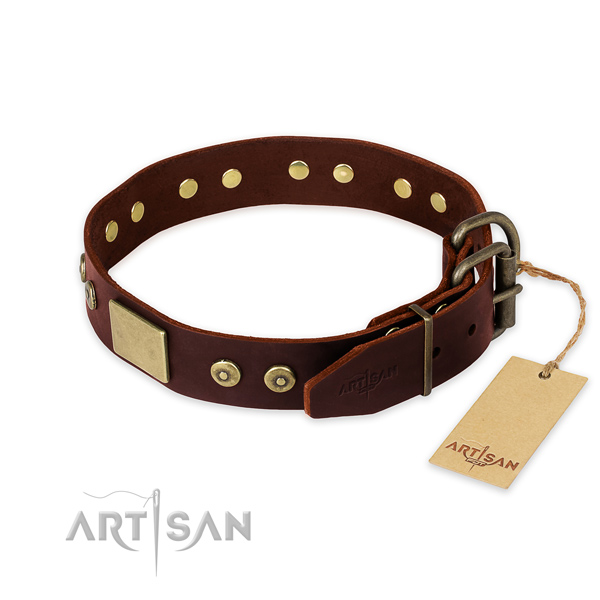 Rust-proof D-ring on daily use dog collar