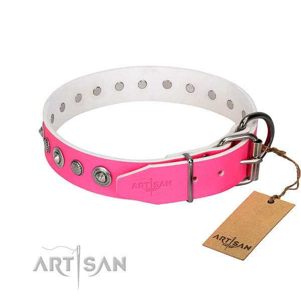Reliable natural leather dog collar with extraordinary studs