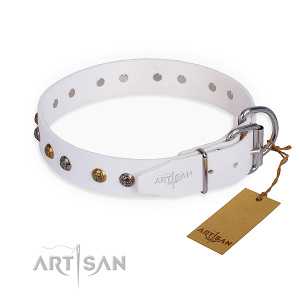 Natural leather dog collar with unique rust resistant studs