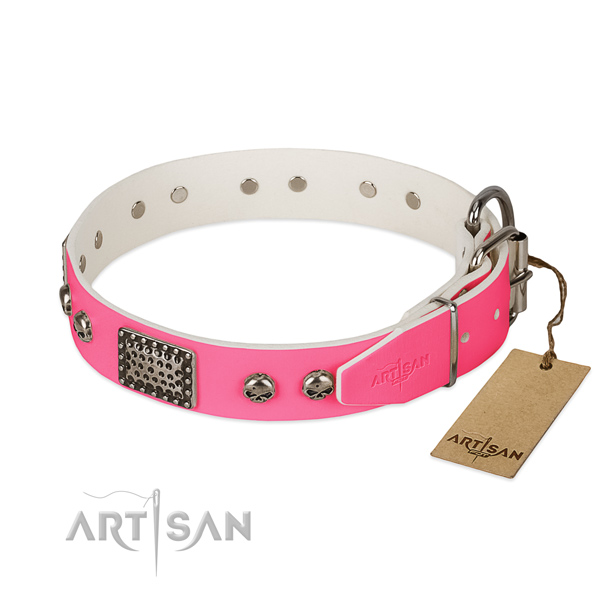 Corrosion proof decorations on daily use dog collar