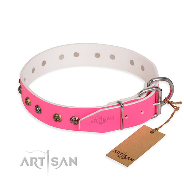 Leather dog collar with trendy durable studs