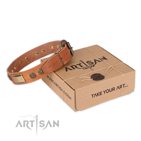 Corrosion proof hardware on leather dog collar for everyday walking
