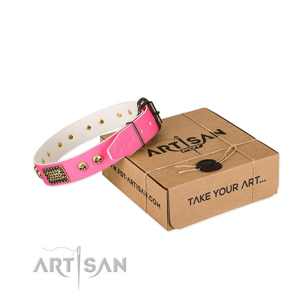 Reliable decorations on dog collar for everyday use