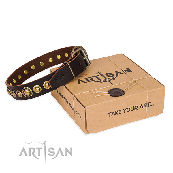Reliable full grain genuine leather dog collar handcrafted for basic training
