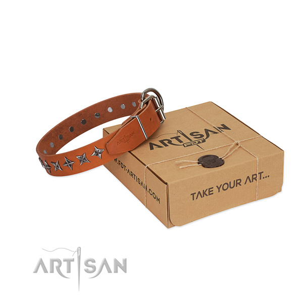 Comfy wearing dog collar of top notch full grain genuine leather with studs