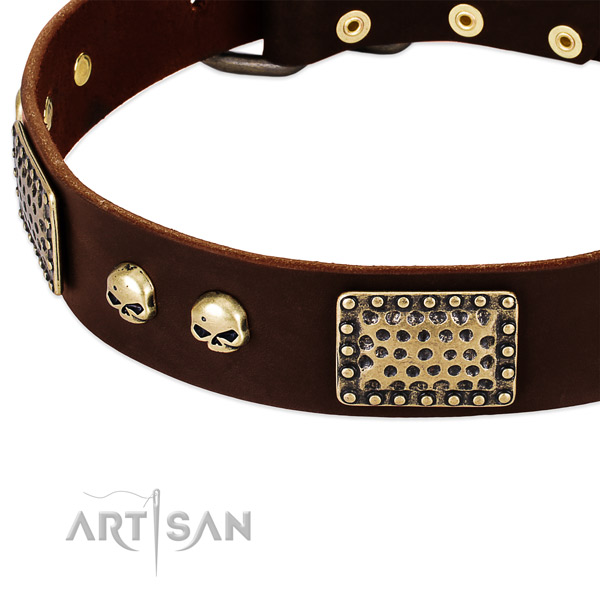 Rust-proof traditional buckle on genuine leather dog collar for your canine
