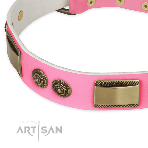 Full grain natural leather dog collar with adornments for everyday use