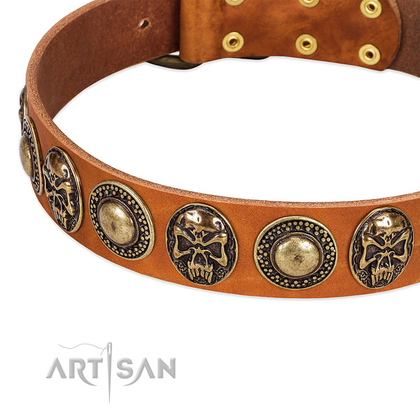 Durable decorations on natural leather dog collar for your four-legged friend