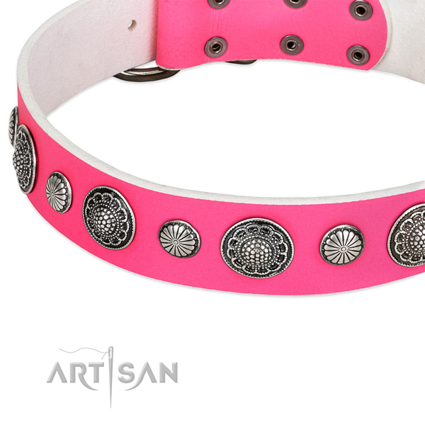 Leather collar with reliable buckle for your lovely canine