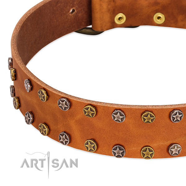 Handy use leather dog collar with trendy studs