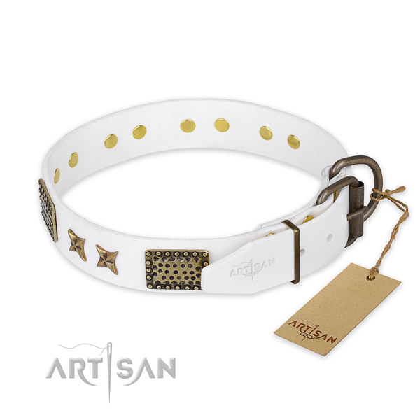 Reliable traditional buckle on leather collar for your attractive pet