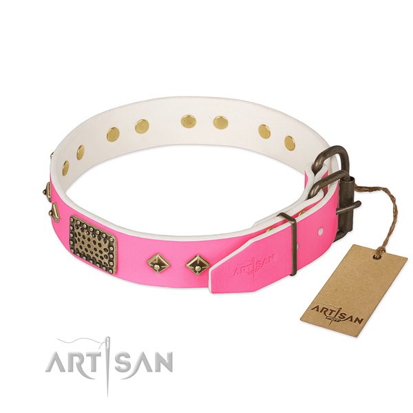 Corrosion resistant hardware on easy wearing dog collar
