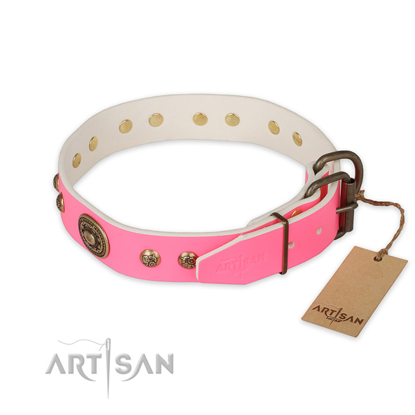 Rust-proof hardware on full grain natural leather collar for fancy walking your doggie
