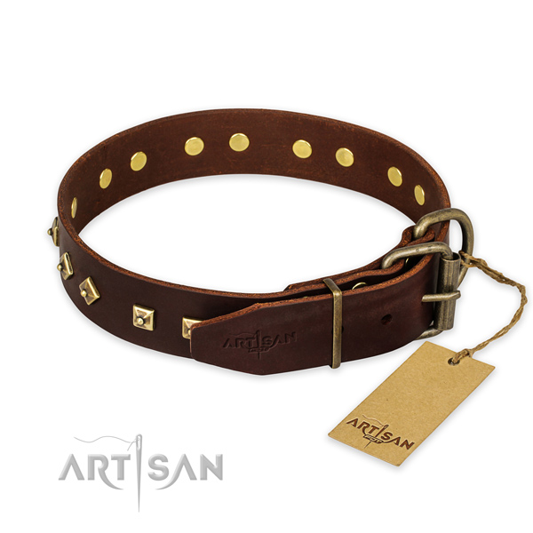 Rust resistant D-ring on full grain leather collar for daily walking your doggie