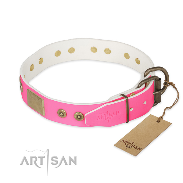 Reliable traditional buckle on daily walking dog collar