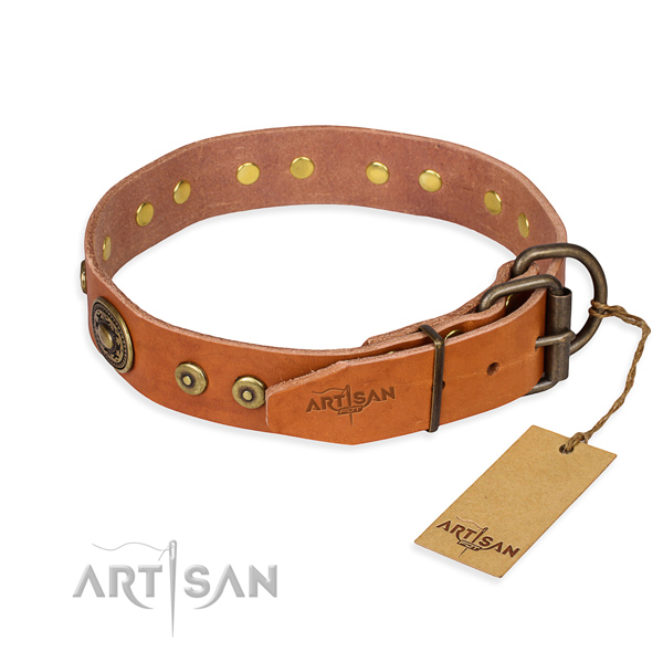 Leather dog collar made of top rate material with reliable decorations