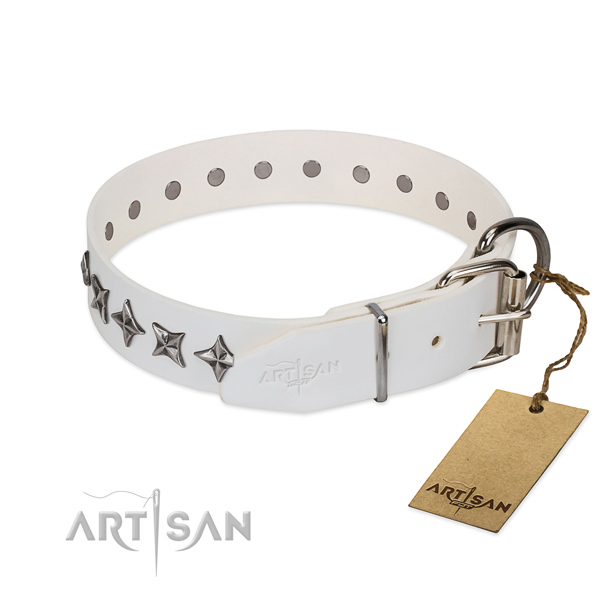 Everyday walking studded dog collar of best quality genuine leather
