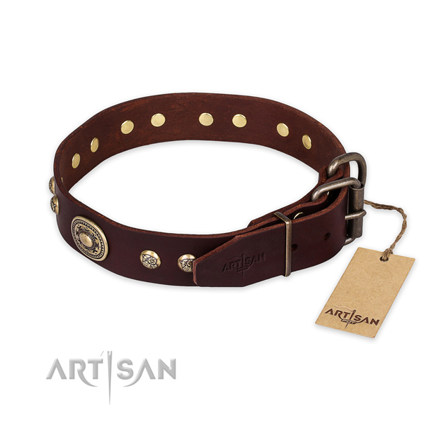 Reliable buckle on full grain natural leather collar for fancy walking your dog