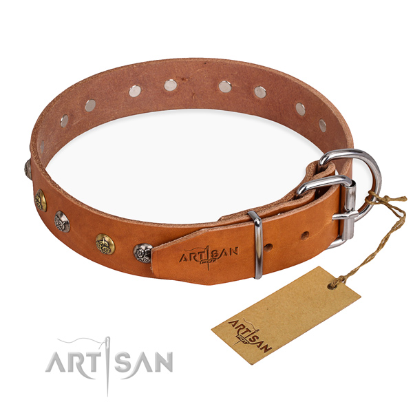 Full grain natural leather dog collar with significant strong adornments