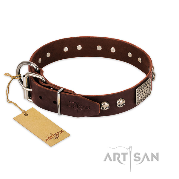 Strong D-ring on everyday use dog collar