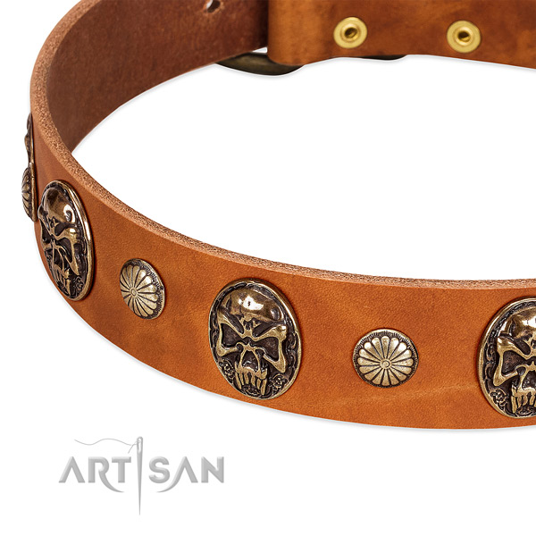 Strong studs on full grain leather dog collar for your pet
